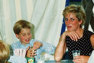 The Heartbreaking Thing Prince William Told Diana After She Lost Her Title in the Divorce