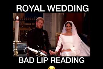 Royal Reptile Wedding Bad Lipreading