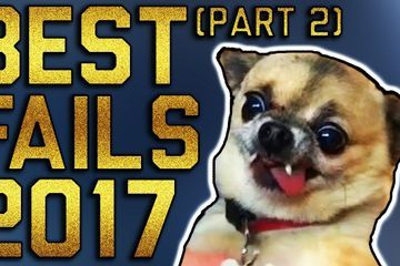Best Fails of the Year 2017 Part 2 (December 2017) || FailArmy